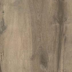 oak-anteprima11